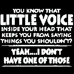 Little Voice Inside My Head