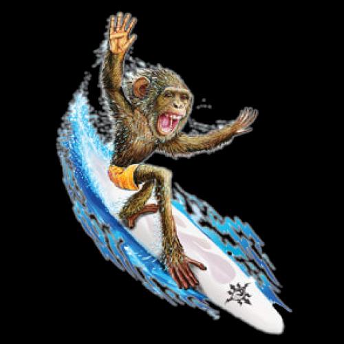 Surfing Monkey