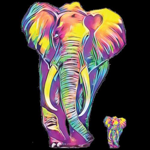 Elephant (Colorful)