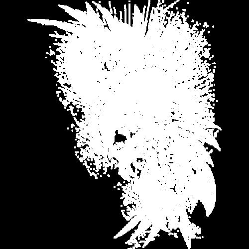 Skull (Winged Ax)
