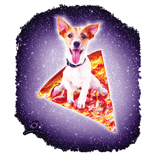Galaxy Terrier Riding Pizza (Dog)
