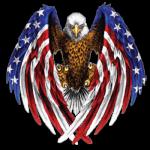 Eagle Flags