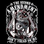 2nd Amendment (Don't Tread on Me)