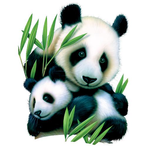 Bear (Panda and Cub)