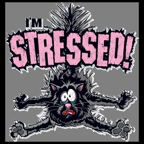 Cat (I'm Stressed)