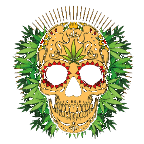 Skull (Cannabis)