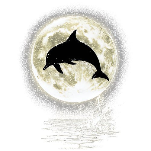 Dolphin (Bright Full Moon)