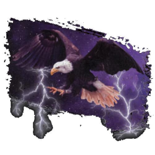Eagle (Lightning)