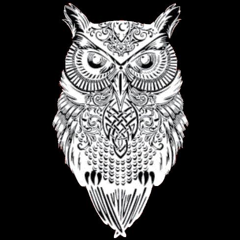 Owl (White)