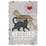 Rescued My Friend