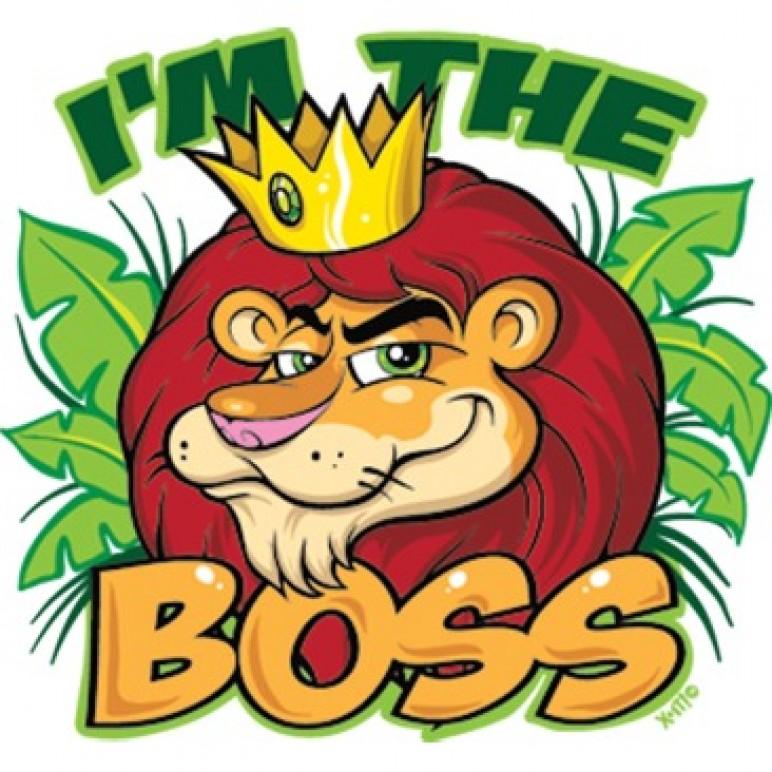 Lion (im the Boss)