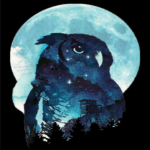 Owl (Moon/Outpost)