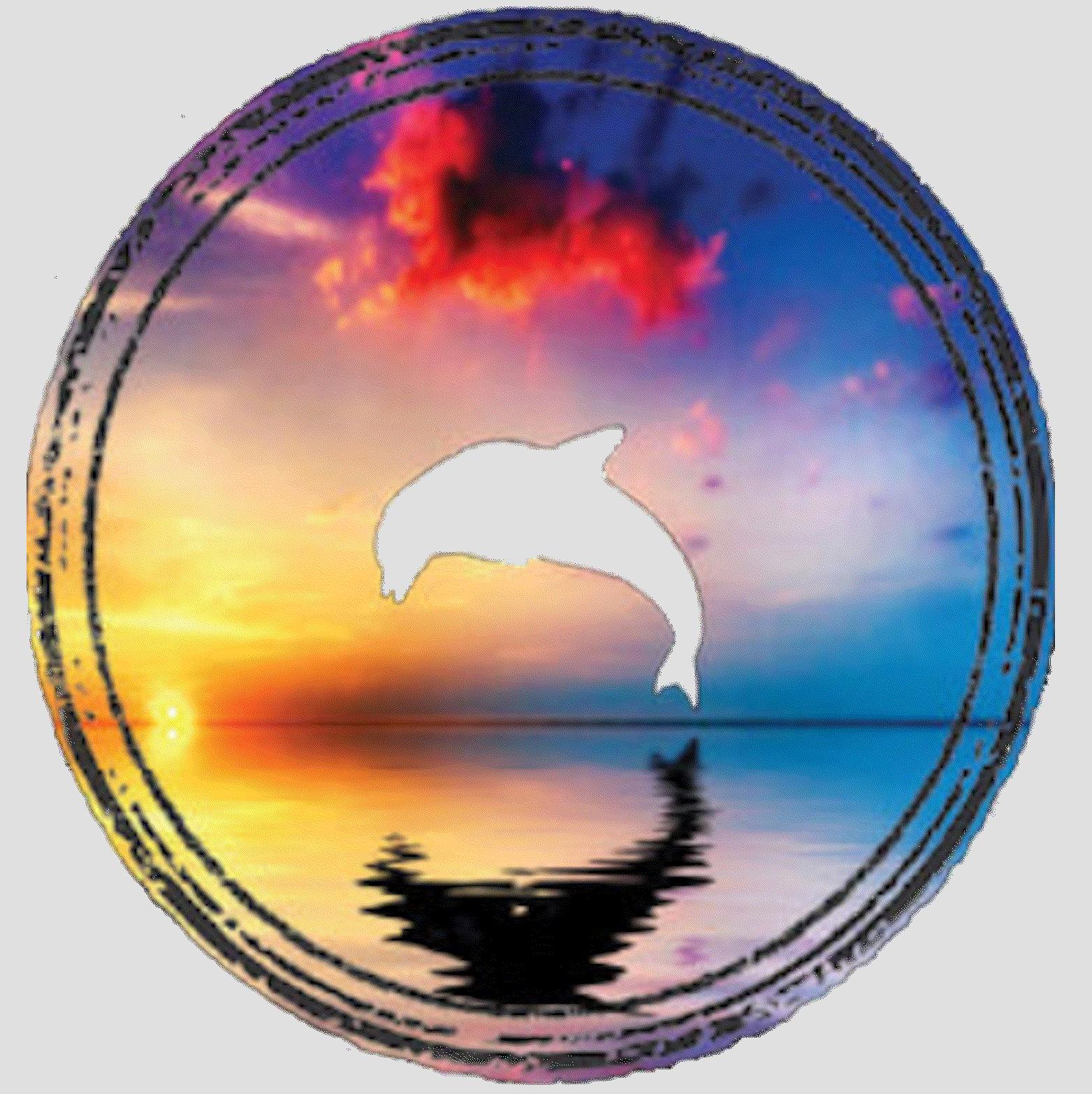 Dolphin (sunset)