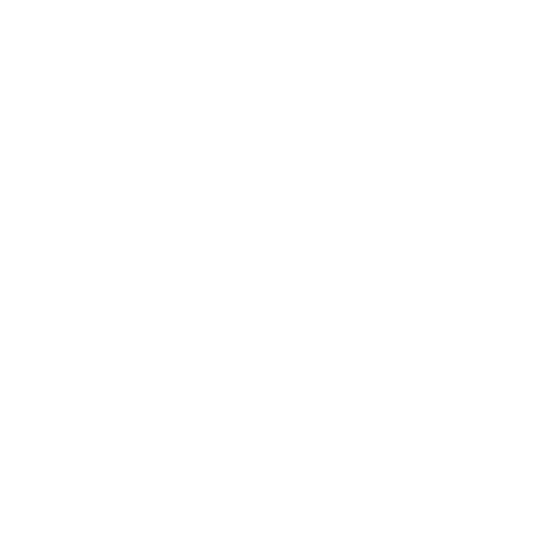Owl (Skull Wings)