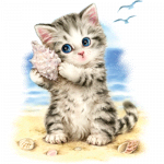 Cat (Seashell Kitten)