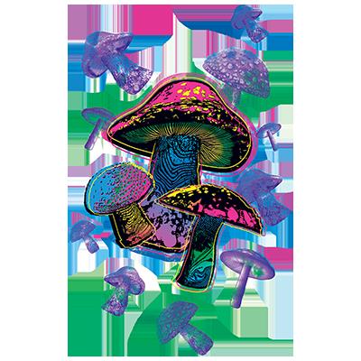 Mushrooms (Colorful)