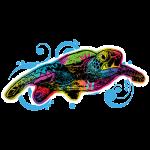 Sea Turtle (Colorful Swirl)