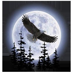 Eagle (Moon)