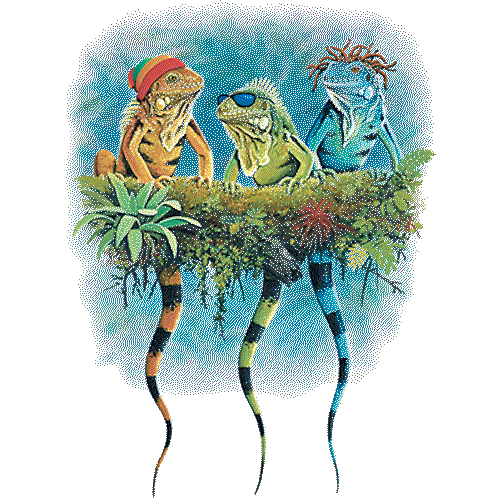 Iguanas (Reggae)
