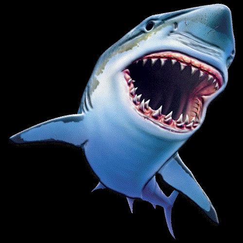 Solar (Sharky)