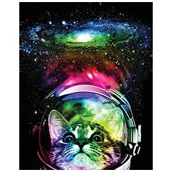 Cat (Cosmos)
