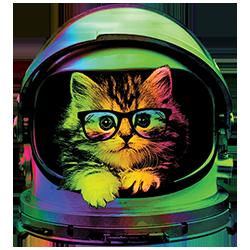 Space Kitten (Not Solar)