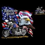 Motorcycle (Eagle – American Pride)