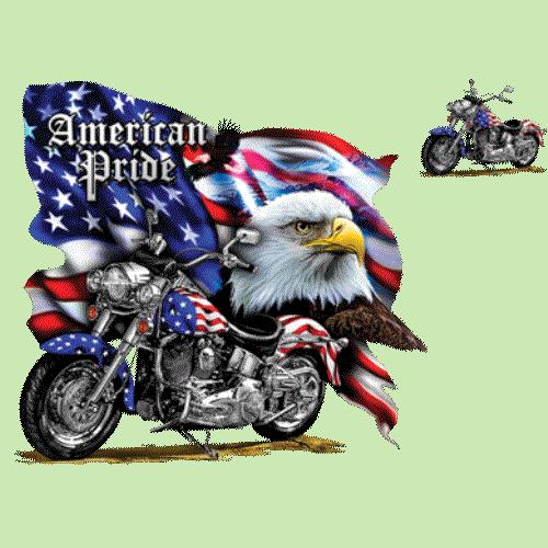 Motorcycle (Eagle - American Pride)