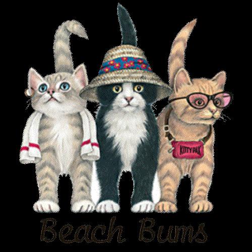 Beach Bum Cats