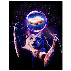 Cat (PB&J)