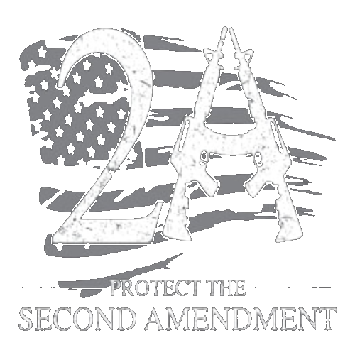 2A Protect (2nd Amendment)