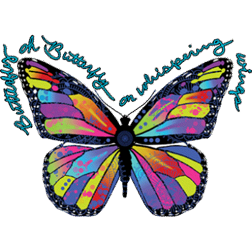 Butterfly (Colorful)