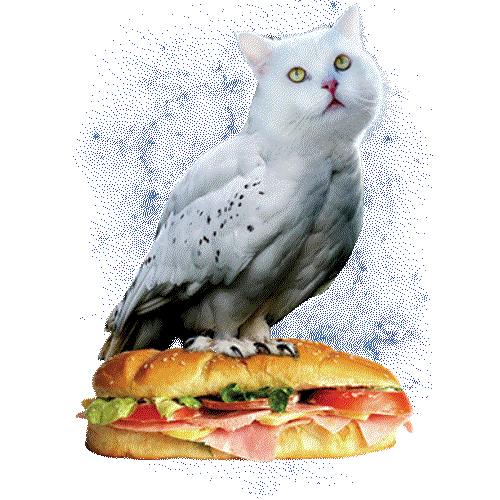 Meowl (Cat Owl on a Sub)