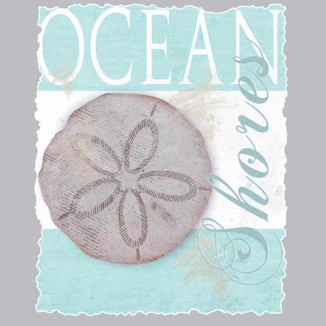 Ocean Shores (Sand Dollar)