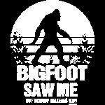 Big Foot Saw Me