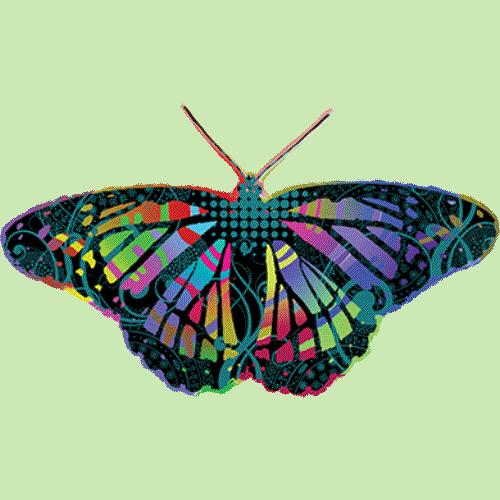 Butterfly (Tie Dye)