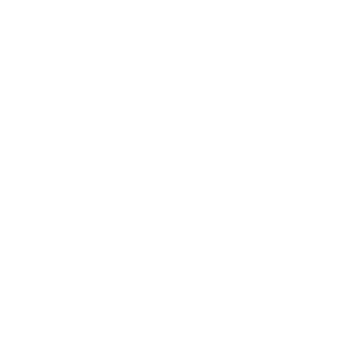 Big Foot (Official Search Team)