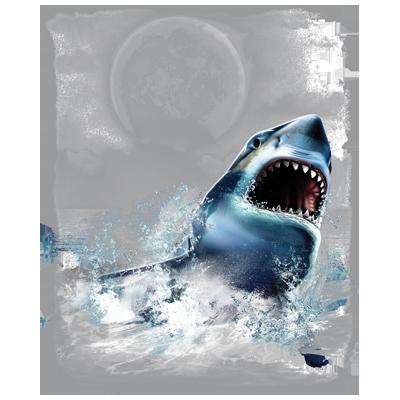 Shark (Wilderness)