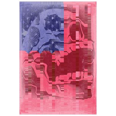 Flag (Skull Background)