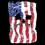 Skull Smile (Flag Background)