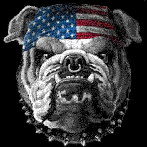Bulldog Patriot (Dog Flag Bandana)