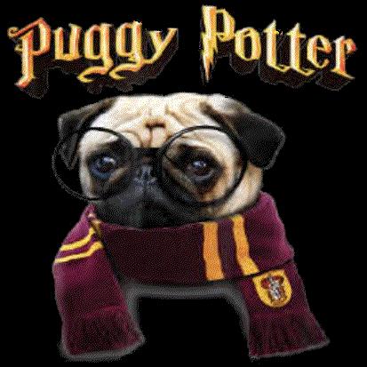 Dog (Puggy Potter/Pug)