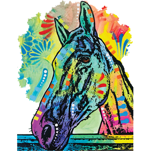 Rainbow Horse (Colorful)